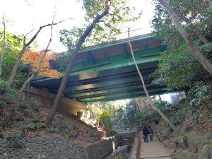 等々力渓谷 環八に架かる橋