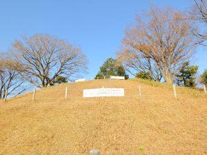 野毛大塚古墳の頂上部(下から撮影)