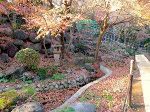 等々力渓谷 日本庭園